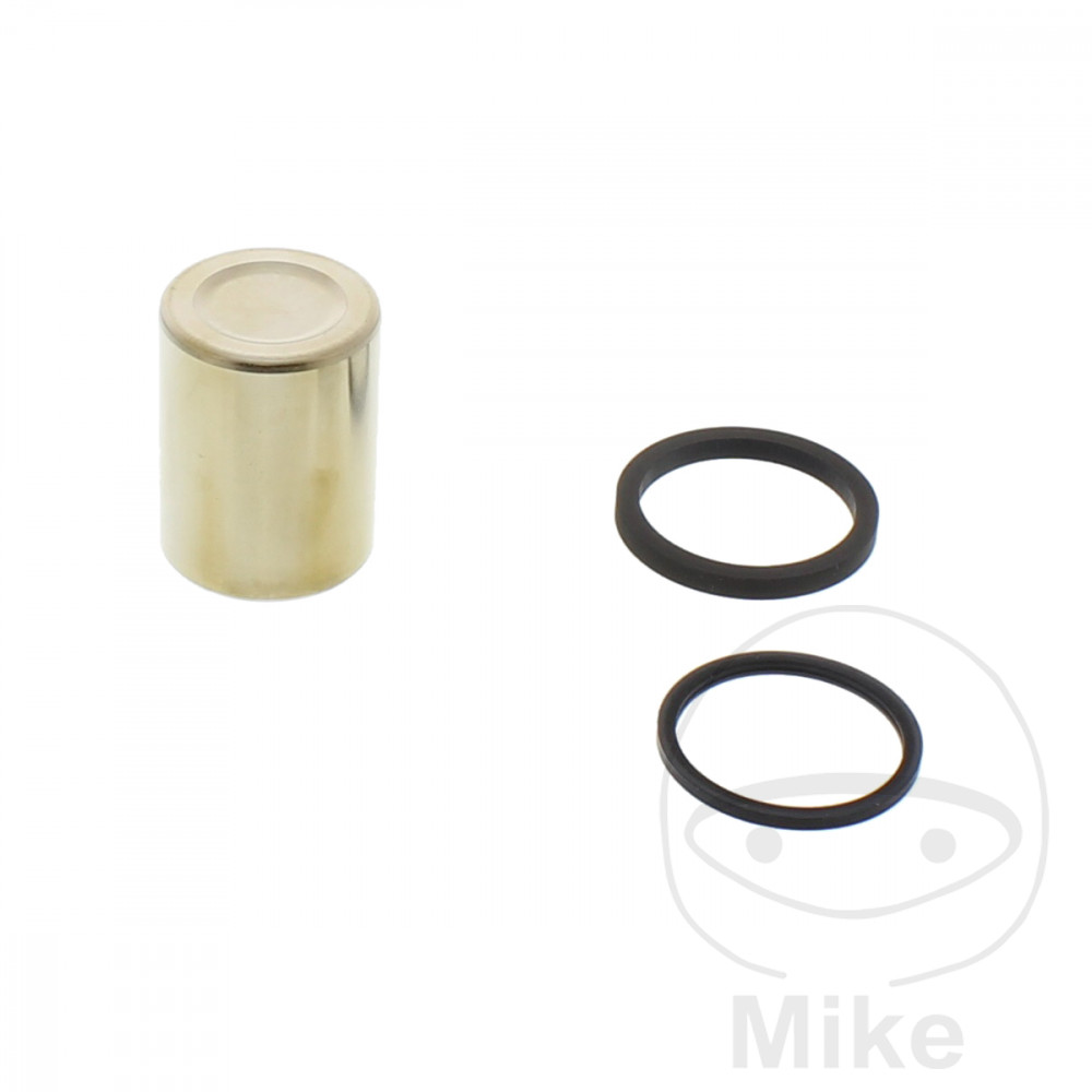 BRAKE CALIPER PISTON KIT - 717.01.43