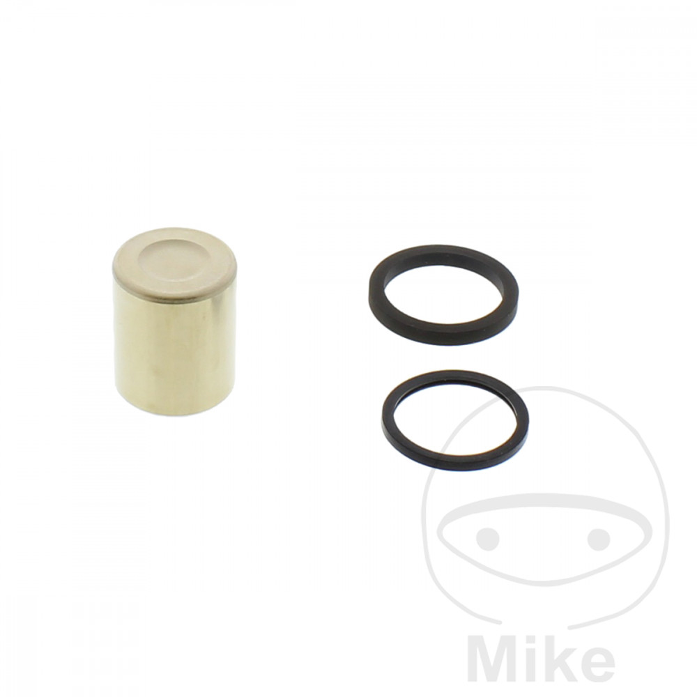 BRAKE CALIPER PISTON KIT - 717.01.41