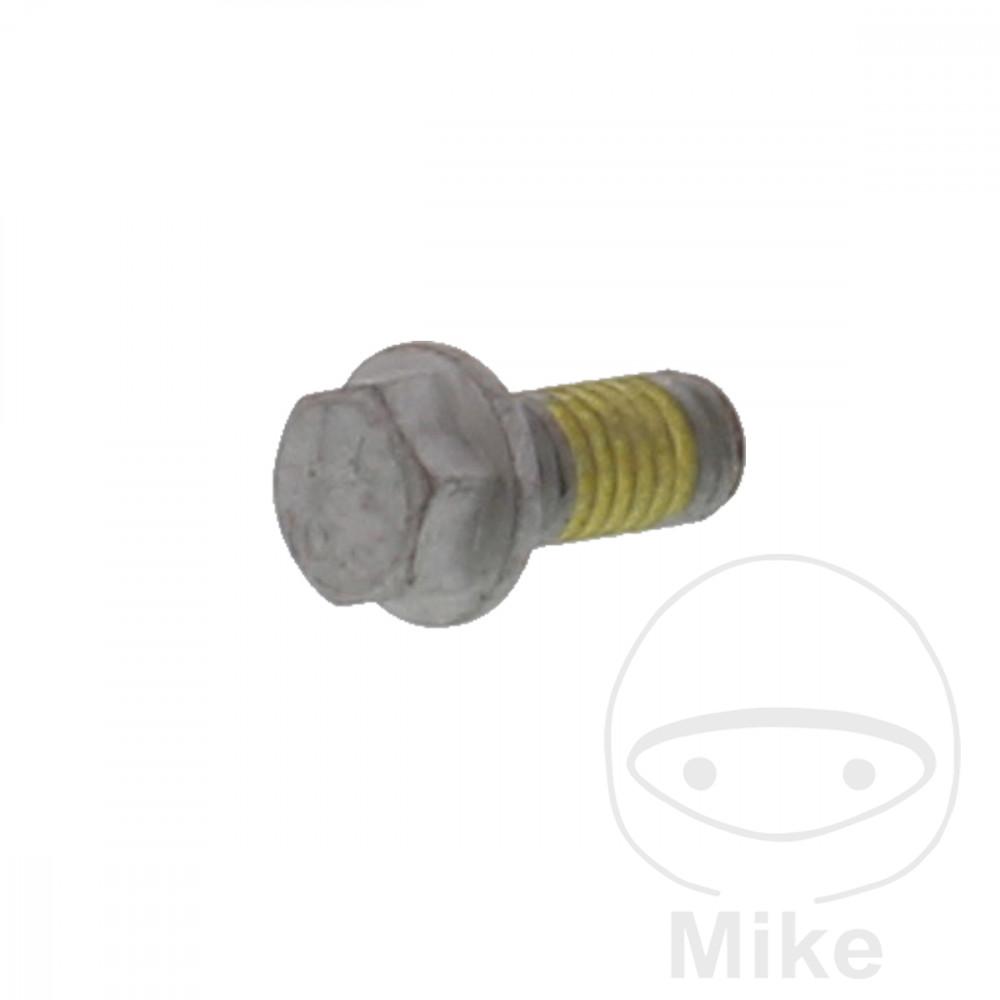 BRAKE DISC BOLT M6X1.0X13MM - 717.02.09