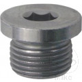 CORE PLUG 10 PIECES