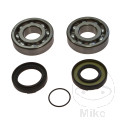 CRANKSHAFT BEARING KIT INCLUDING SEALS - ALL BALLS RACING